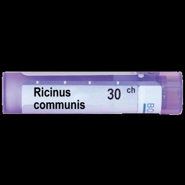 РИЦИНУС КОМУНИС   RICINUS COMMUNIS 30CH