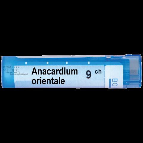 Снимка на Анакардиум Ориентале (Anacardium Orientale) 9СН, Boiron за 4.39лв. от Аптека Медея