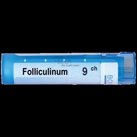 Фоликулинум (Filliculinum) 9СН, Boiron