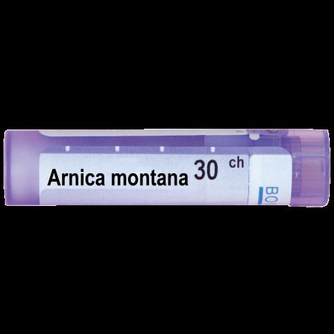 АРНИКА МОНТАНА   ARNICA MONTANA 30СН
