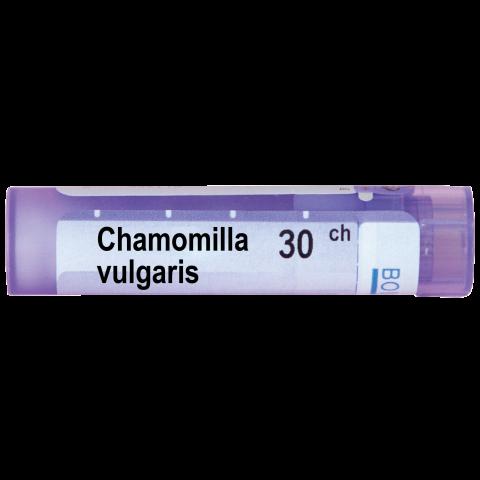 Снимка на ХАМОМИЛА ВУЛГАРИС | CHAMOMILLA VULGARIS 30СН за 4.39лв. от Аптека Медея
