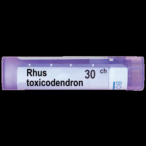 Снимка на РУС ТОКСИКОДЕНДРОН   RHUS TOXICODENDRON 30СН за 4.39лв. от Аптека Медея
